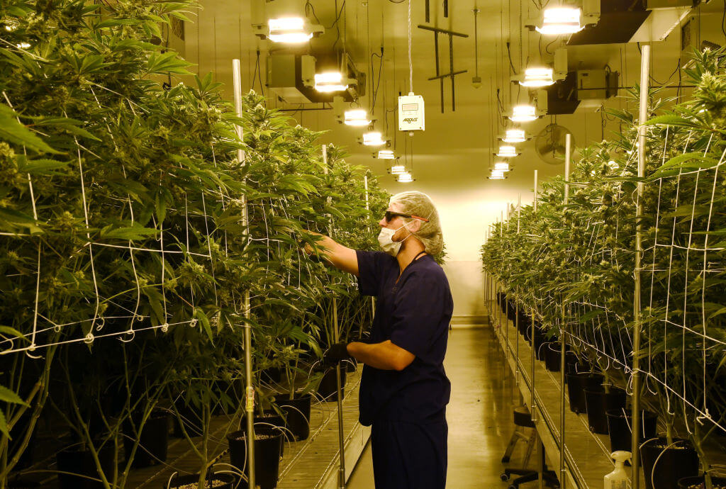 Will Louisiana fully legalize marijuana? 10 things to know about the debate