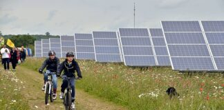 Louisiana considers solar farm regulations