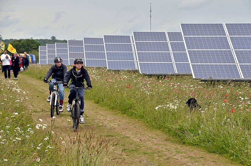 Louisiana considers solar farm regulations as crop farmers voice concerns